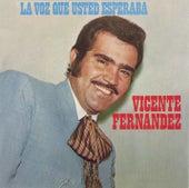 La Voz Que Usted Esperaba de Vicente Fernández