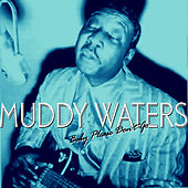 Baby Please Don't Go de Muddy Waters