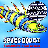 Spice Doubt by Ozric Tentacles