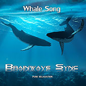 Whale Song - with Music and Sounds of the Ocean - Alpha Brainwave Entrainment by Brainwave-Sync