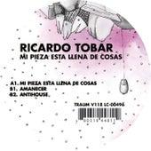 Mi Pieza Esta Llena de Cosas by Ricardo Tobar