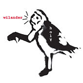 Wilander by Holy