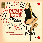Dumb Luck by Circe Link