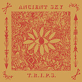 T.R.I.P.S. by Ancient Sky