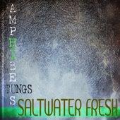 Salt Water Fresh de Various Artists