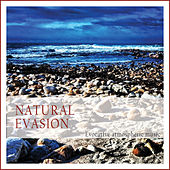 Natural Evasion (Evocative Atmospheric Music) by Various Artists