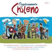 Orgullosamente Chileno 1 de Various Artists