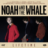 Lifetime by Noah and the Whale