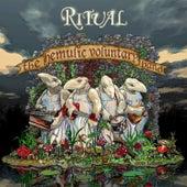 The Hemulic Voluntary Band by Ritual