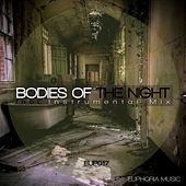 Bodies of the Night by Dual T