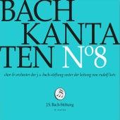 Bachkantaten N°8 (BWV 7, 18, 107) von Orchester der J. S. Bach-Stiftung Chor der J. S. Bach-Stiftung