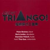 Super Triango! by Tina Guo