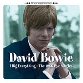 I Dig Everything the 1966 Pye Singles de David Bowie