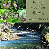 Tenney Mountain Highway by Sweet Harriet