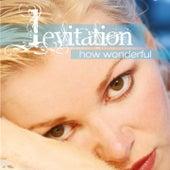 How Wonderful by Levitation