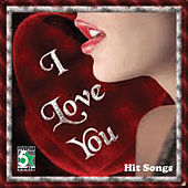 I Love You - Hit Songs by Various Artists