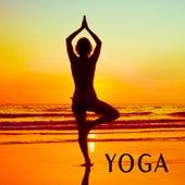 Yoga de Paul Avgerinos
