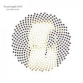 One Three Seven (2013 Remaster) von The Pineapple Thief
