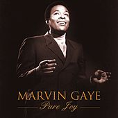 Pure Joy by Marvin Gaye