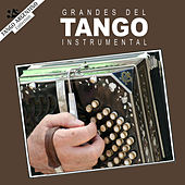 Grandes del Tango Instrumental by Various Artists