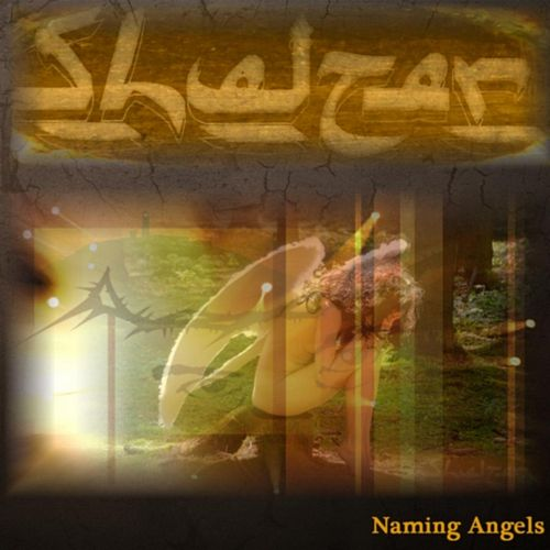 Naming Angels by Shelter