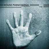House Phenomena by Various Artists