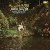 The Woods So Wild by Julian Bream