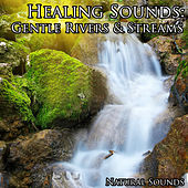 Healing Sounds: Gentle Rivers & Streams by Natural Sounds
