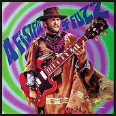 A Fistful Of Fuzz - The Best Of 1960s Us Fuzz Guitar (Remastered) by Various Artists