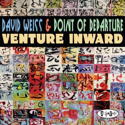 Venture Inward by David Weiss