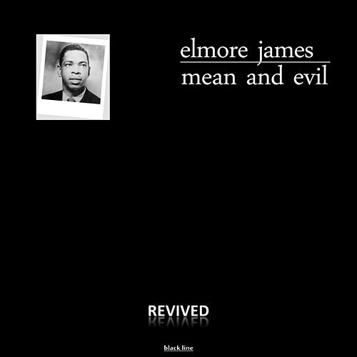 Mean And Evil by Elmore James