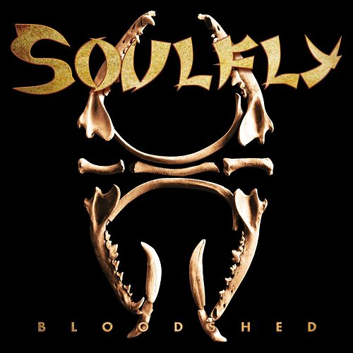 Bloodshed by Soulfly