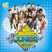 Wie wordt Junior 2013? de Wie Wordt Junior 2013?