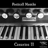 Canarios II by Poeticall Musicke
