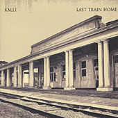 Last Train Home by Various Artists
