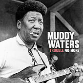 Trouble No More by Muddy Waters