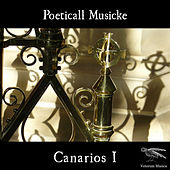 Canarios I by Poeticall Musicke