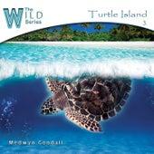 Turtle Island by Medwyn Goodall