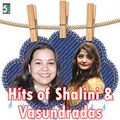 Hits of Shalini and Vasundradas de Various Artists