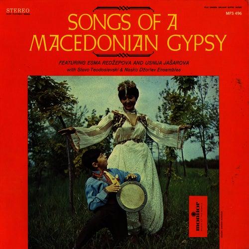 Songs of the Macedonian Gypsy by Esma Redzepova
