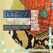 Polytown by David Torn