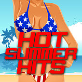 Hot Summer Hits de Various Artists