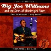 Big Joe Williams and the Stars of Mississippi Blues (B) de Big Joe Williams