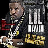 I'm the Dam Connection by Various Artists