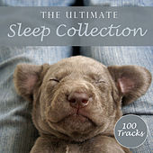 The Ultimate Sleep Collection by Various Artists