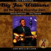 Big Joe Williams and the Stars of Mississippi Blues (A) de Big Joe Williams