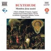 BUXTEHUDE: Membra Jesu Nostri von Accademia Instrumentale Italiana