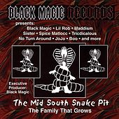 The Mid South Snake Pit de Various Artists