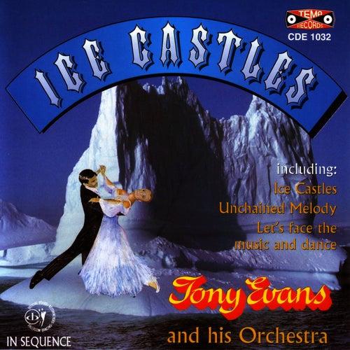 Ice Castles by Tony Evans