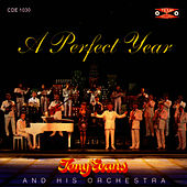 A Perfect Year by Tony Evans